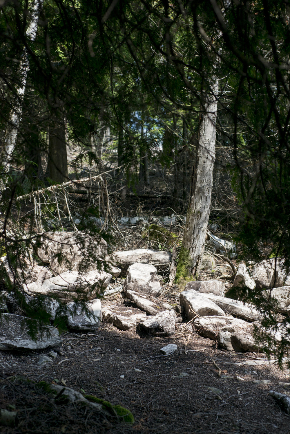 camping-223.jpg