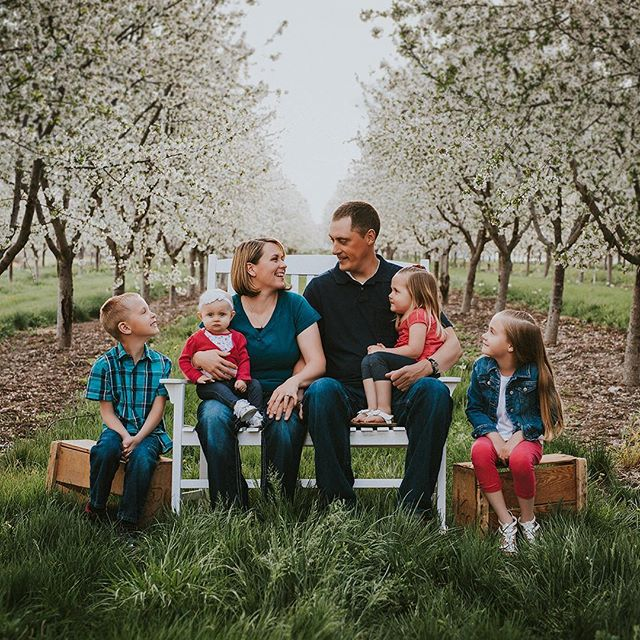 Cherry🍒 blossoms down at the farm. . . . . . . . . #jeffreytaylorphoto #utahphotographer #utahphotography #utahfamilyphotographer #utahfamilyphotography #familylifestyle #family #lifestyle #photo #photos #spanishfork #spanishforkphotographer #utahcountyphotography