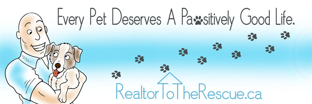 Realtor to the Rescue's new website features an illistration & graphic designed by Blue Sky Communications inc artists.