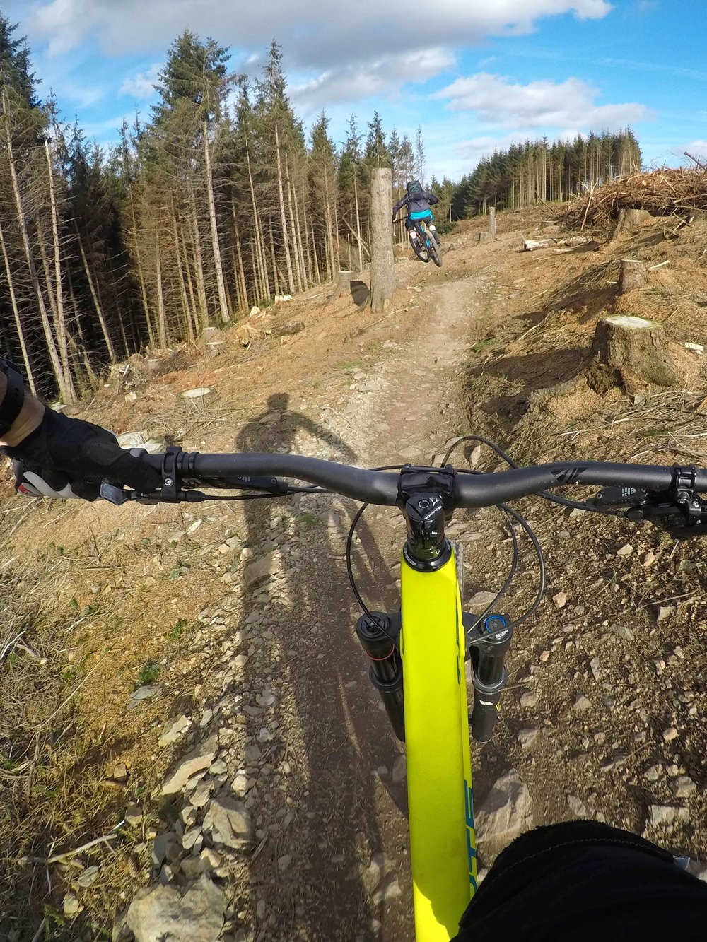 The trail follows the tree line for the first section, with jumps and berms -