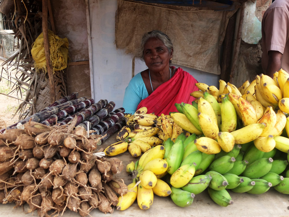 Roadside fruit stall, Tamil Nadu