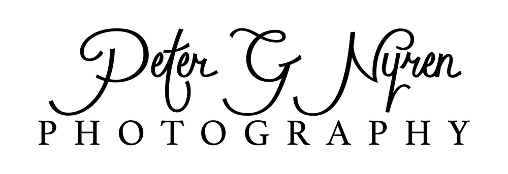 Peter G Nyren Logo