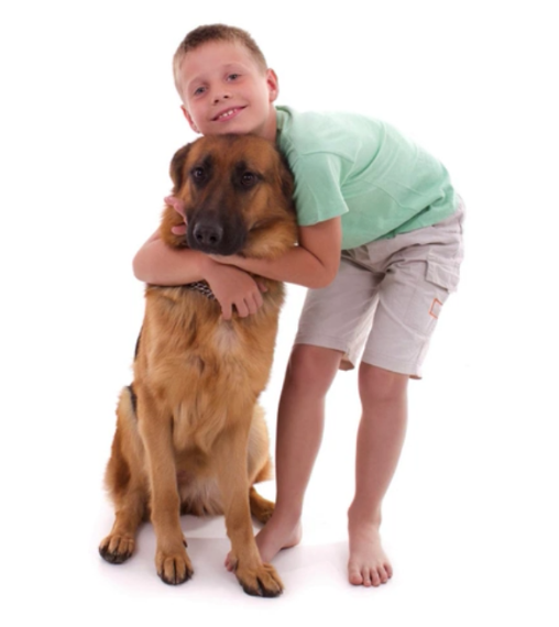 Dogs aren't hot on hugs most of the time, and certainly not headlocks from kids.
