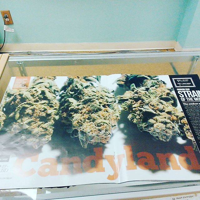 We won strain of the month! Check us out in the OR Leaf!