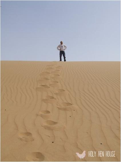 desert--stranger