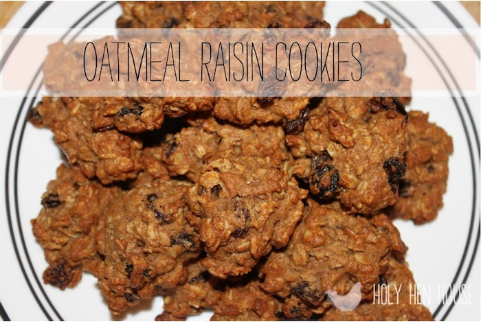 oatmeal_raisin_cookies1