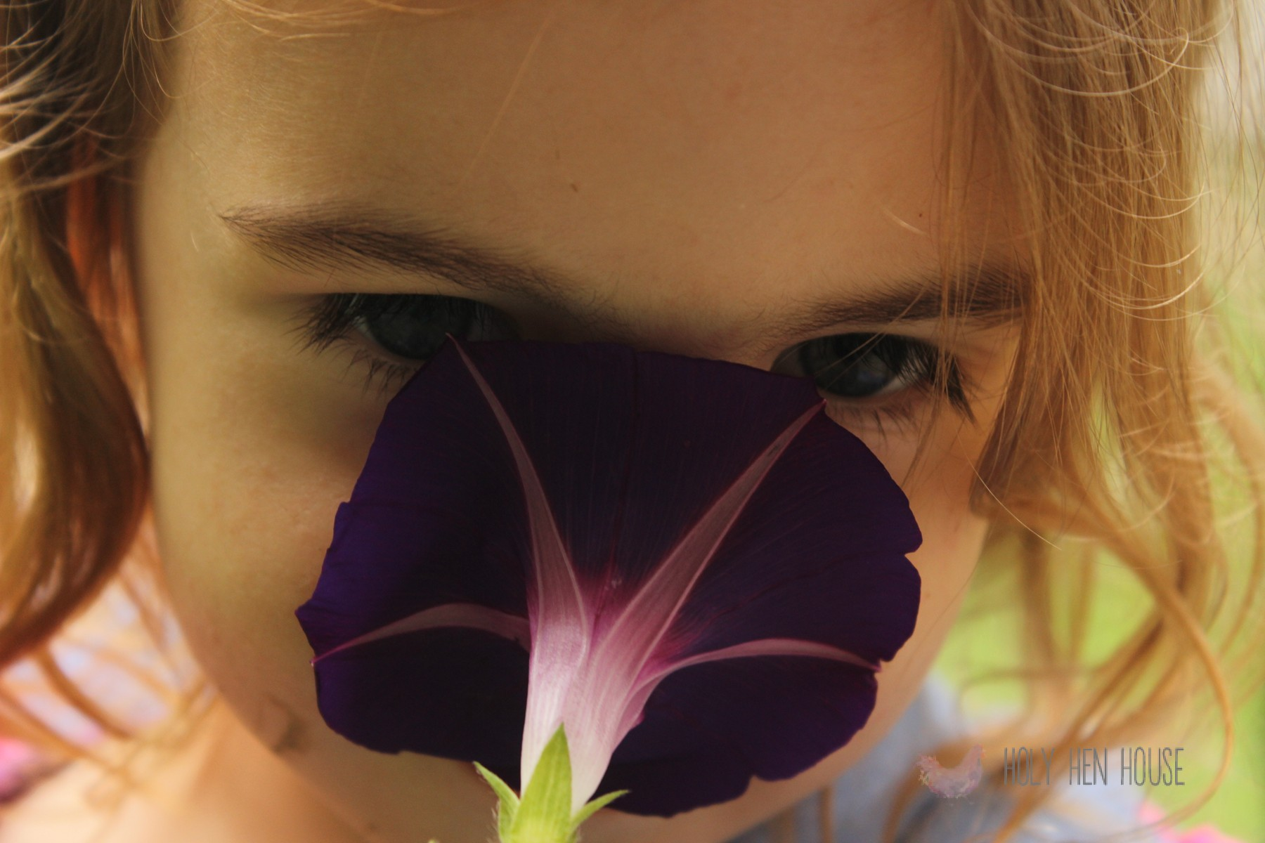 Smelling_Morning_Glories