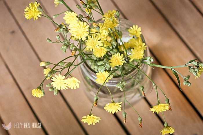 flowers hhh