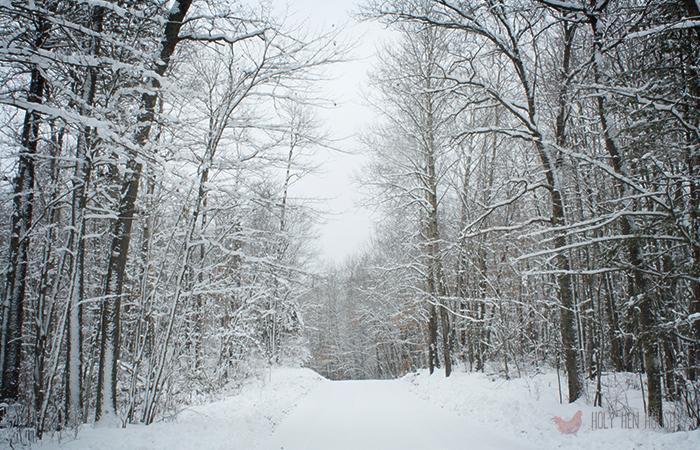 Extra_SnowPass