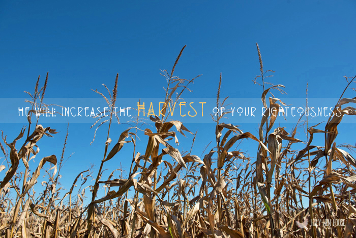 HarvestofRighteousness copy