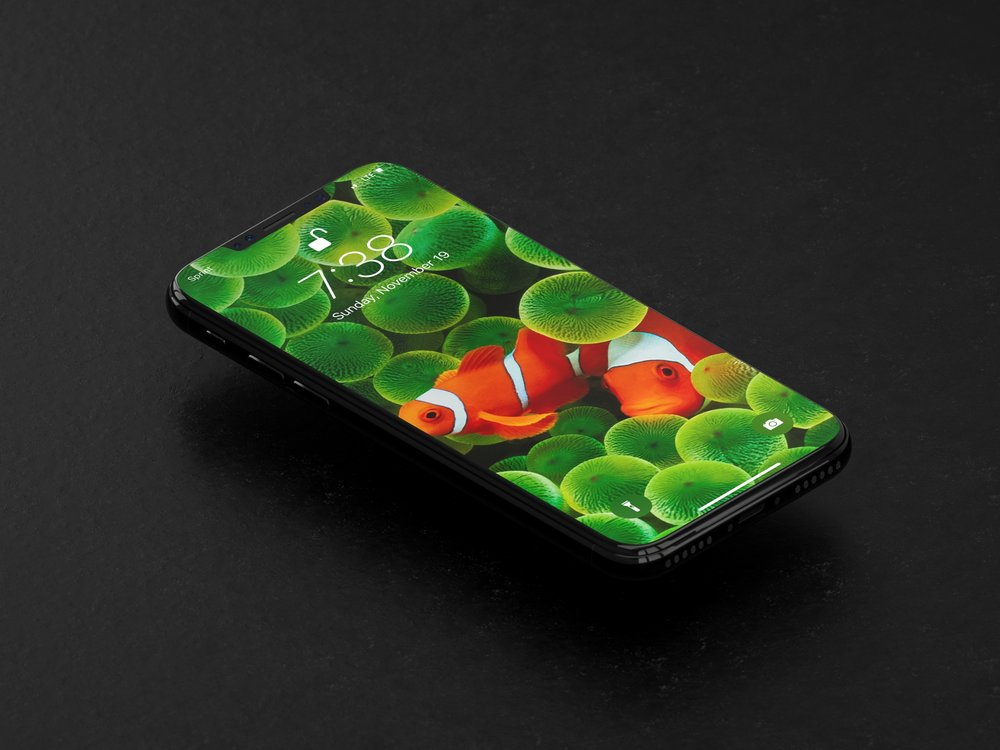 The Best Wallpapers For Iphone X Timothy Buck