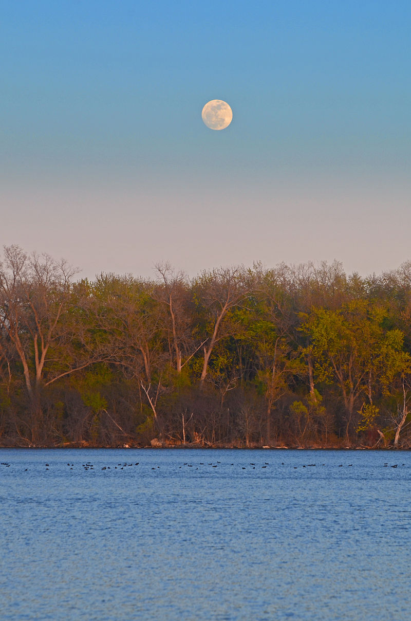 By Richard Hurd from Madison, USA - Wingra moonrise {NAME}Uploaded by ComputerHotline, CC BY 2.0, https://commons.wikimedia.org/w/index.php?curid=19125086