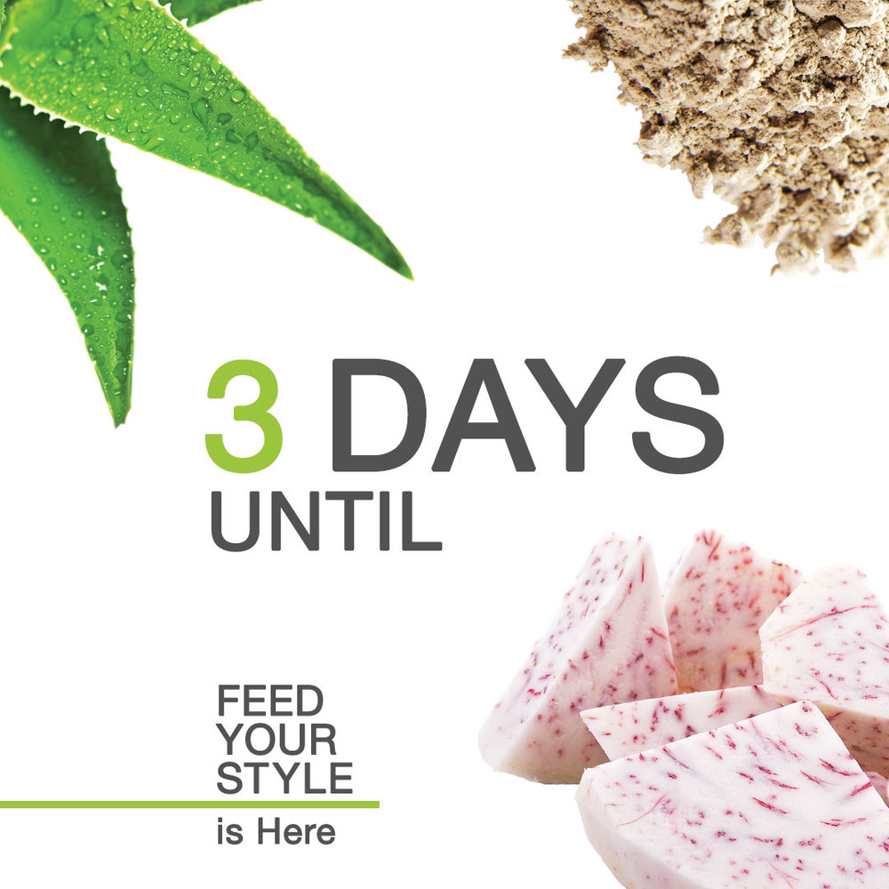 countdown-to-feed-your-style-3.jpg