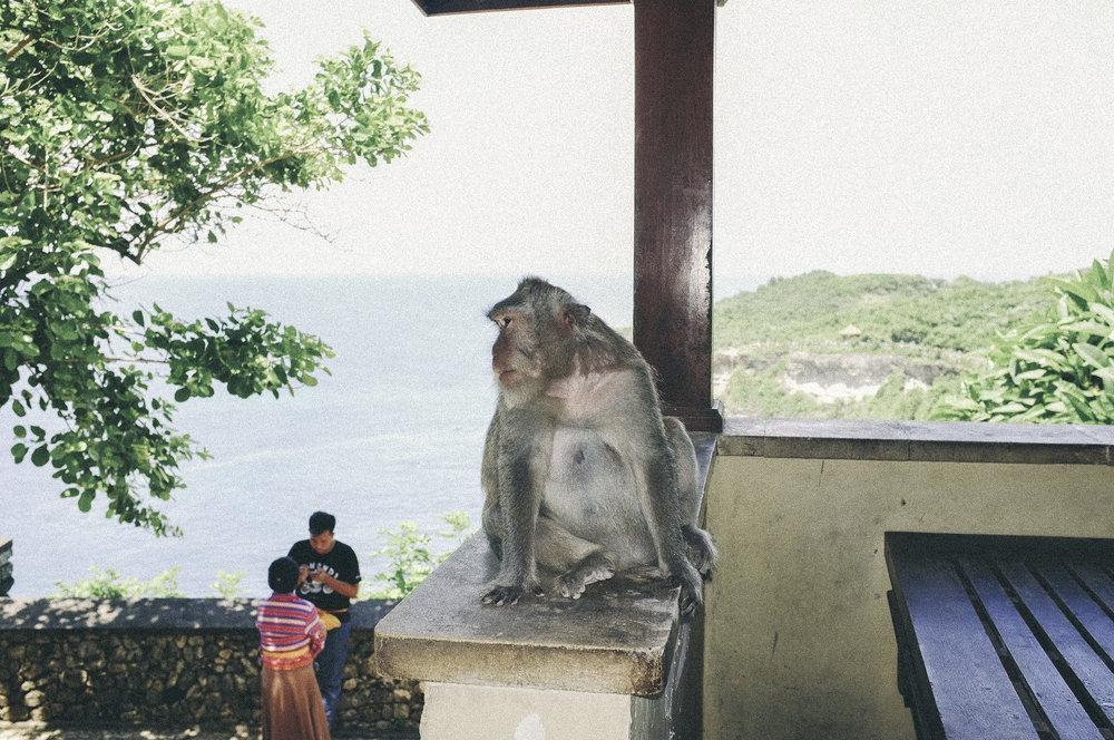 dérrive travel - bali: seminyak travel diary www.derrive.com