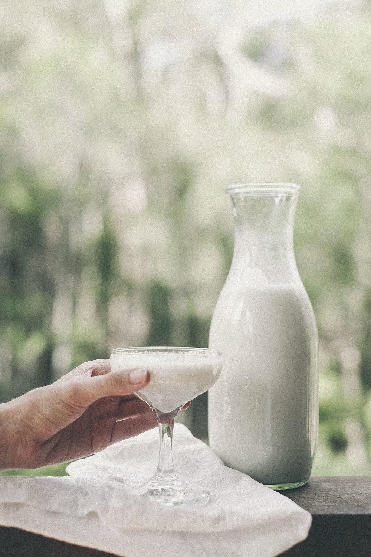 dérrive recipe - creamy vanilla bean and date hemp milk www.derrive.com #paleo #vegan #whole30 #vegetarian #zerowaste #dairyfree #sugarfree #glutenfree #diy #hempseeds #hempmilk