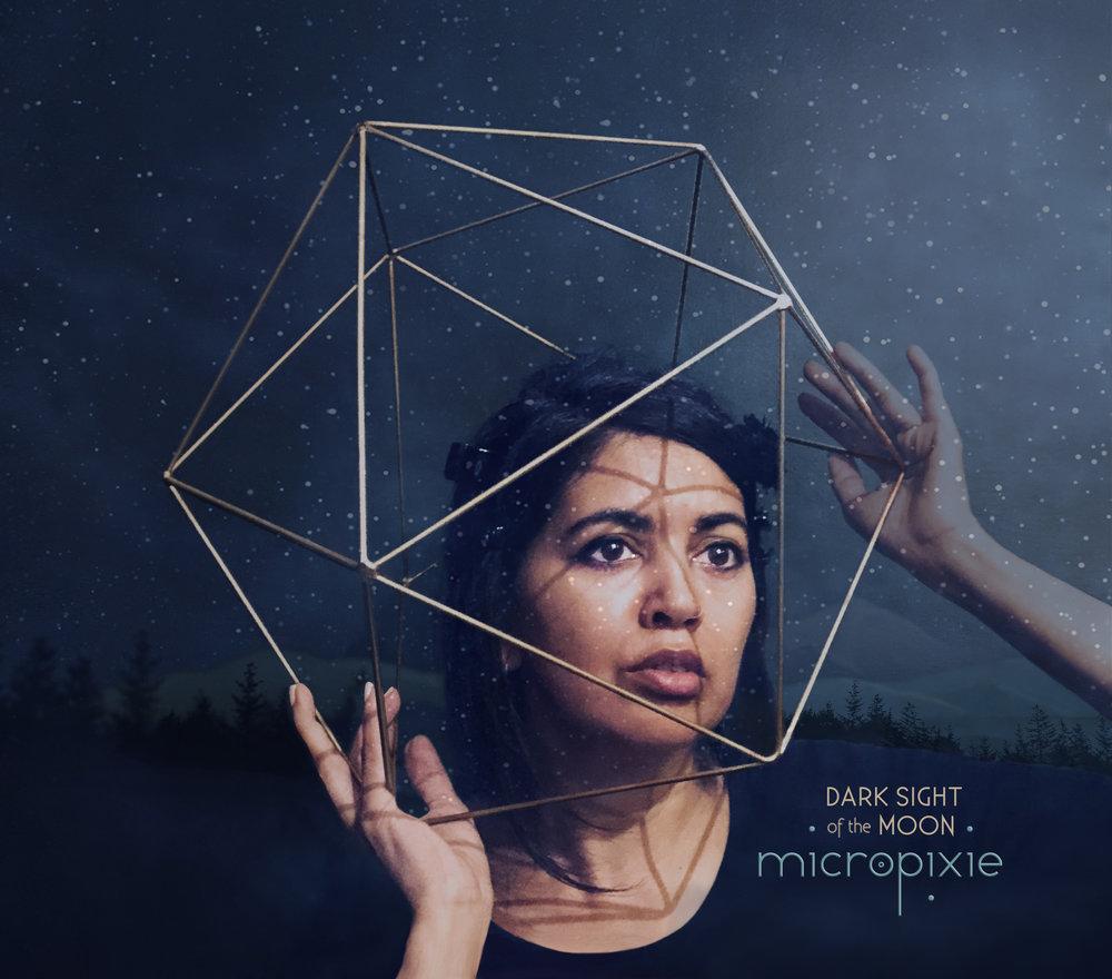 DarkSightoftheMoon_Micropixie_cover_final.jpg