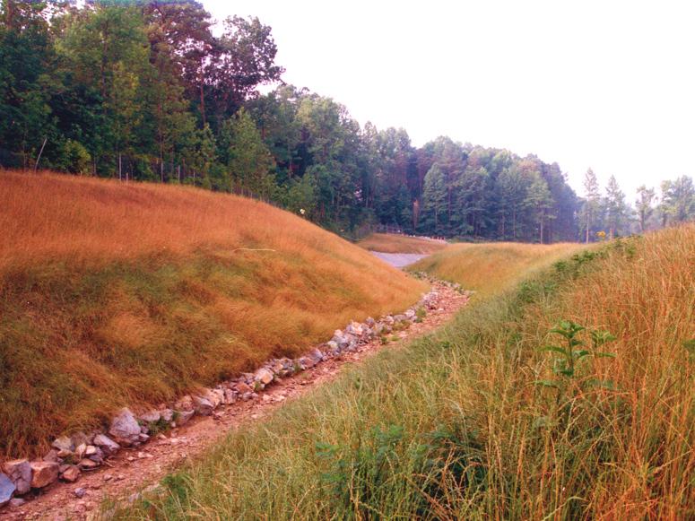 resource-international-anderson-creek-3.jpg