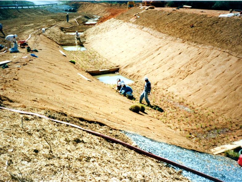 resource-international-anderson-creek-4.jpg