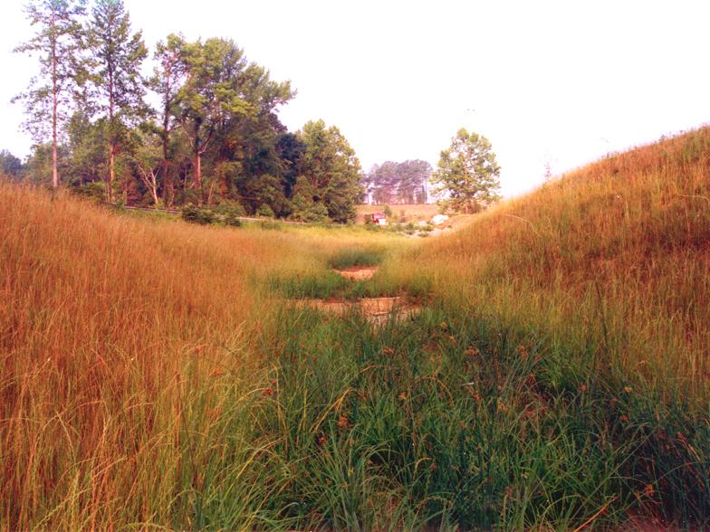 resource-international-anderson-creek-5.jpg