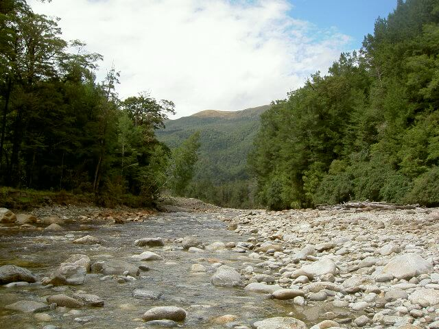 Clark River PAW.JPG