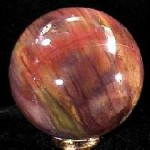 Petrified wood Sphere