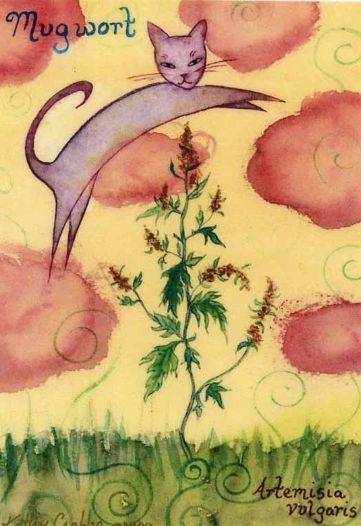Mugwort by Kathy Crabbe