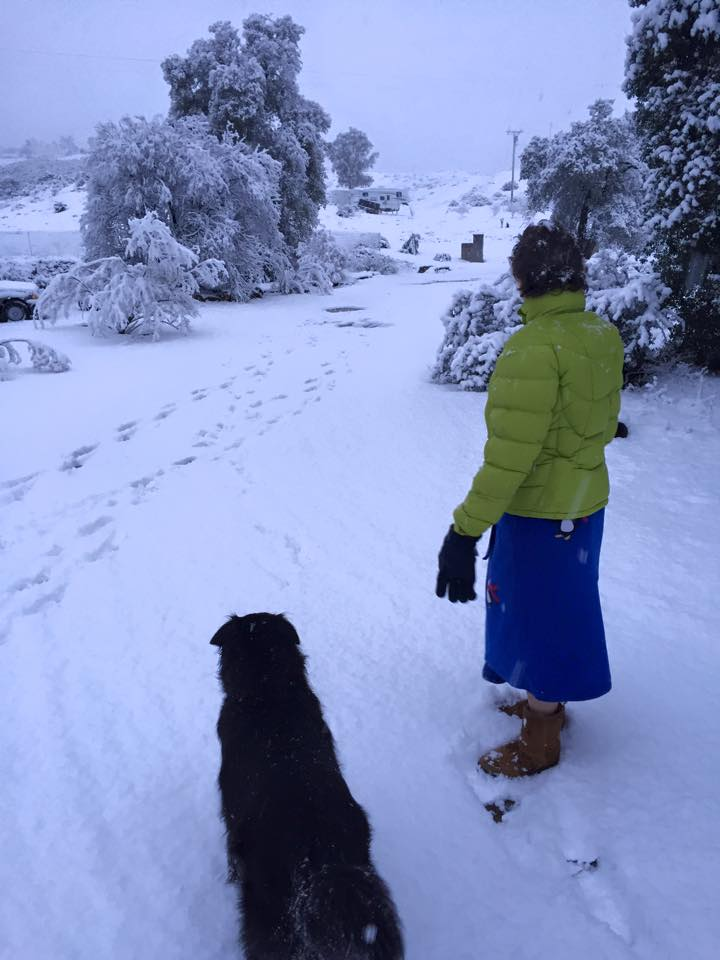 Kathy Crabbe & Abby's first snow