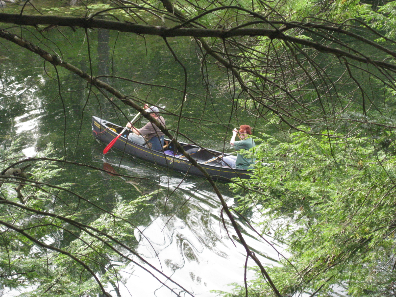 canoeing with my honey, cottage country, Ontario