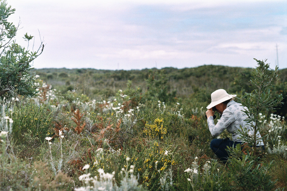 hannahpuechmarin-yuryagir-wildflowers-7.jpg