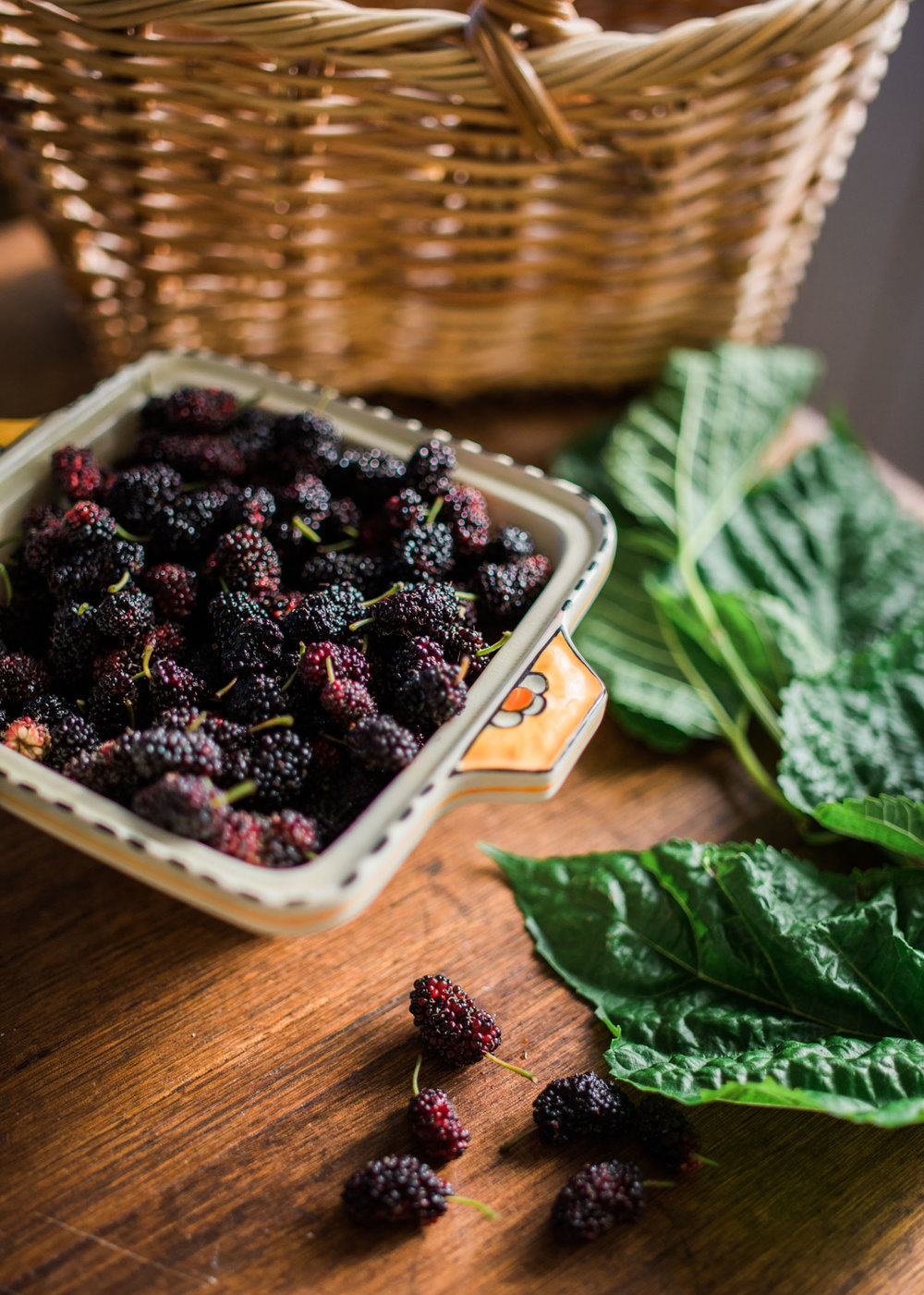 hannahpuechmarin-mulberrypie.jpg