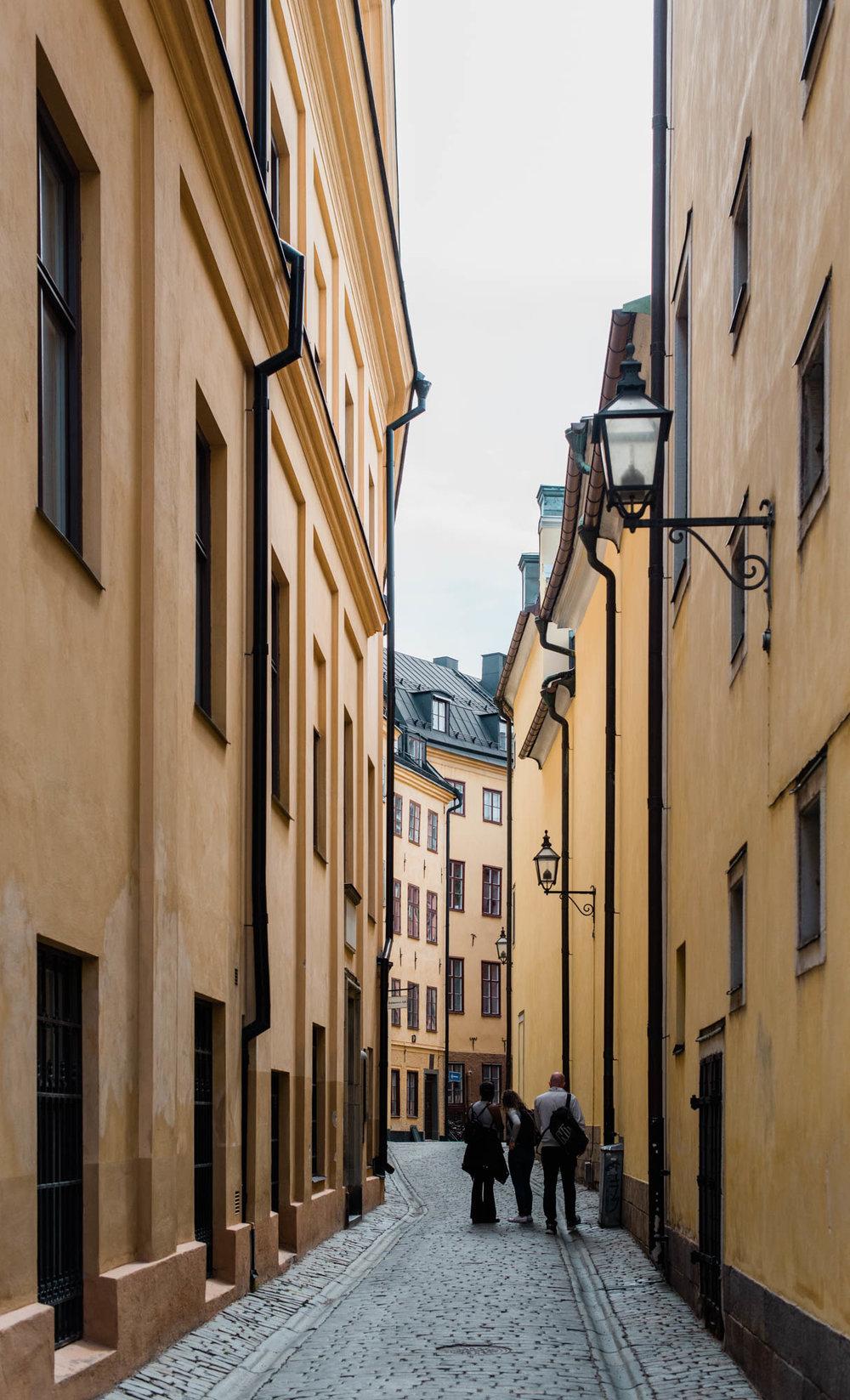 Web-hannah puechmarin-sweden-9133.jpg