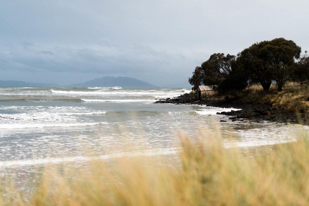 WEB-hannah puechmarin-tasmania photographer-8265.jpg