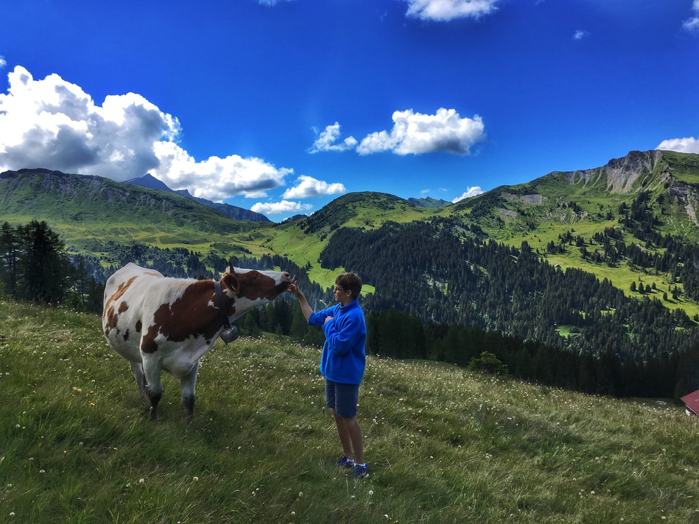 My brother the cow whisperer