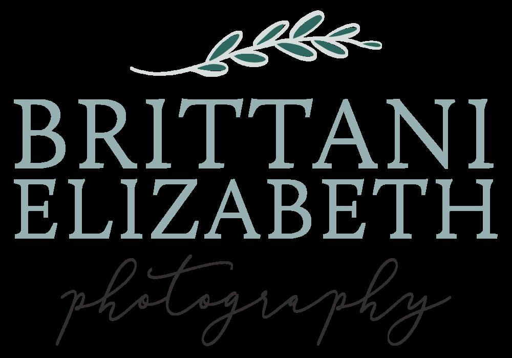 Alyssa Joy & Co. || Logo Variation Design for Brittani Elizabeth Photography