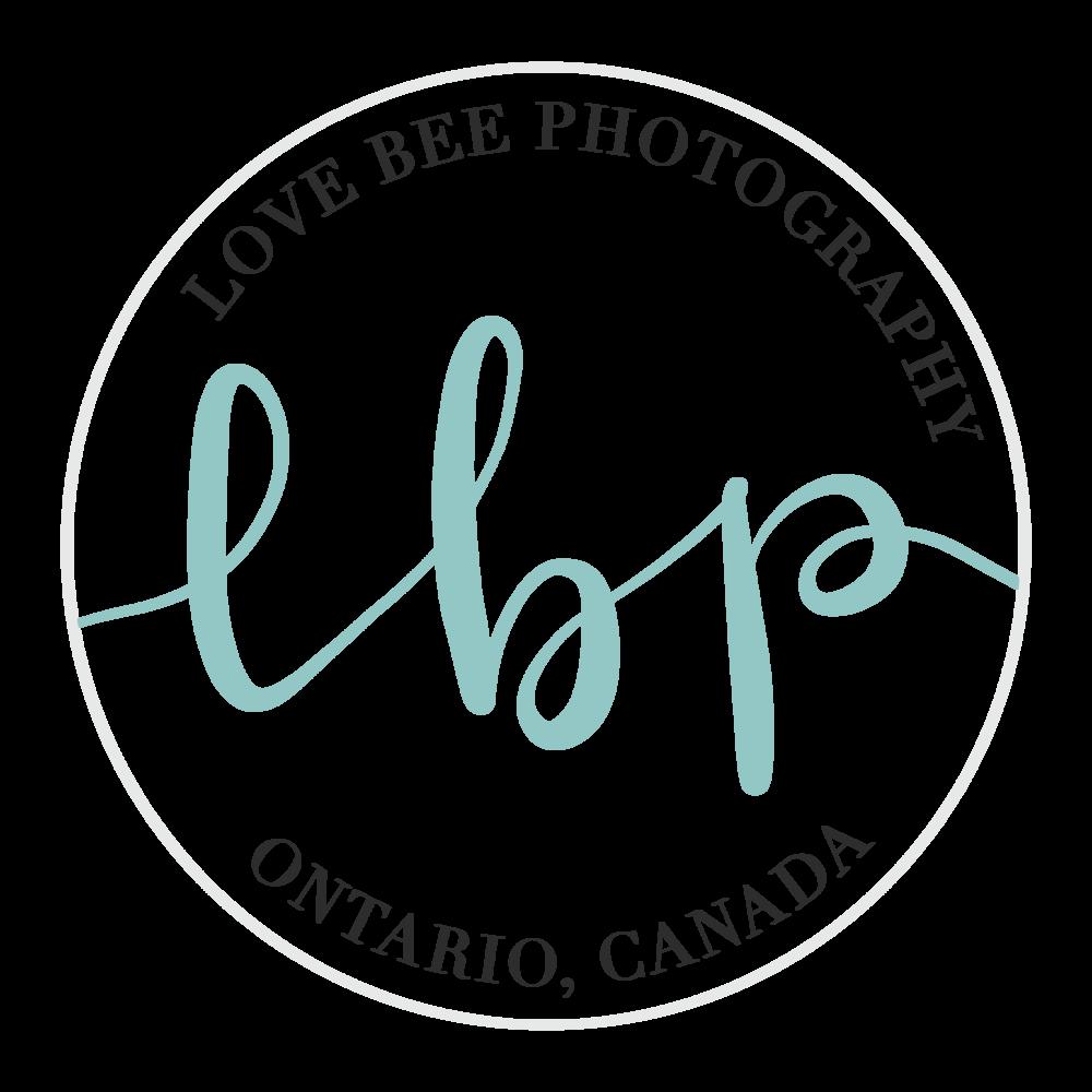 Alyssa Joy & Co. || Submark Design for Love Bee Photography, Ontario, Canada