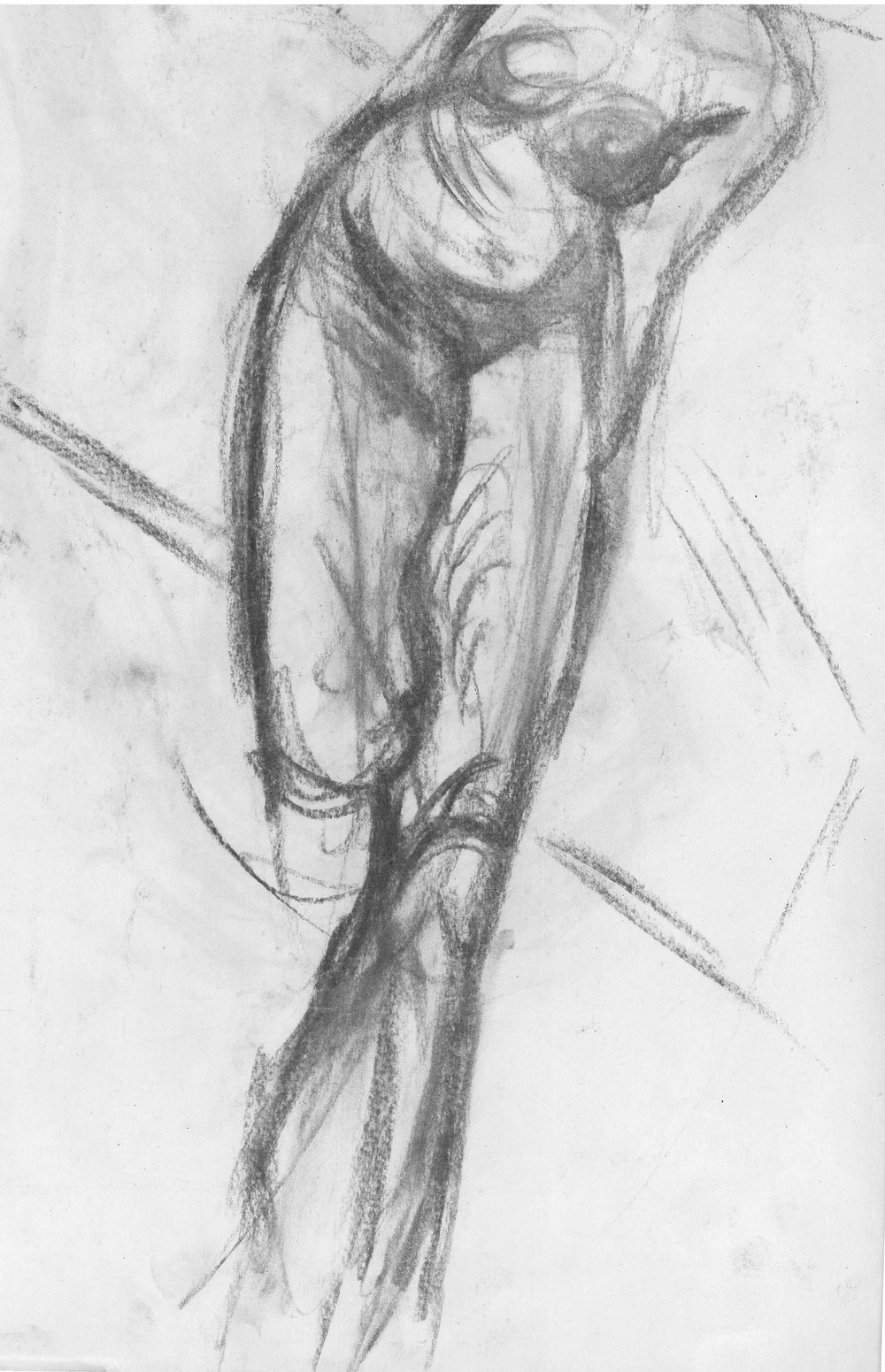Drawing1-4.jpg