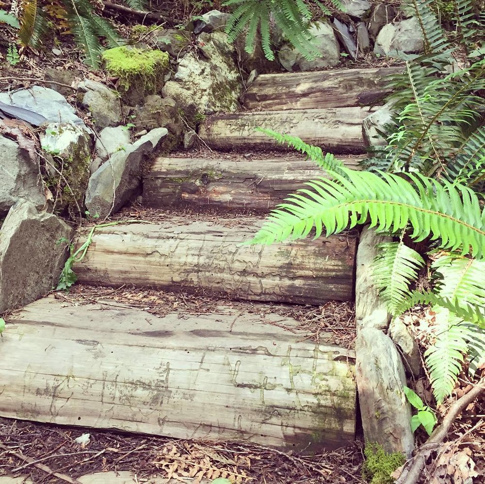 Popkum Community Trail 6.jpg