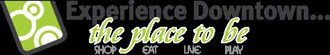 BIA Experience logo horiz.png