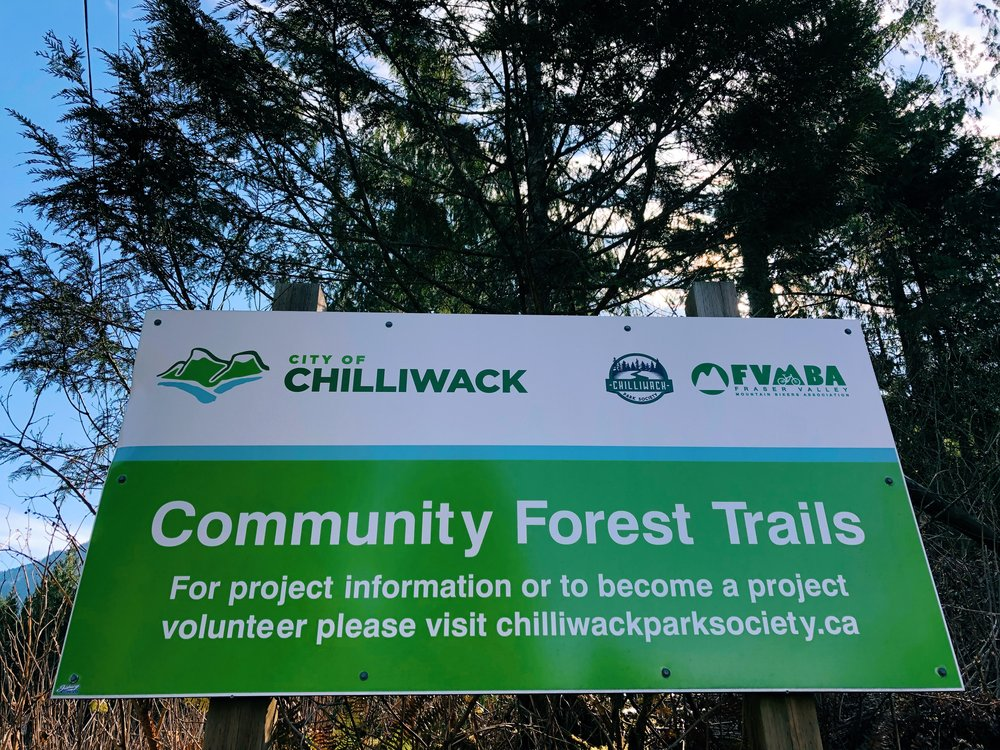 Chilliwack Community Forest_1.jpg