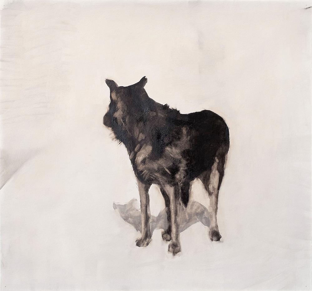 10 Dog.jpg