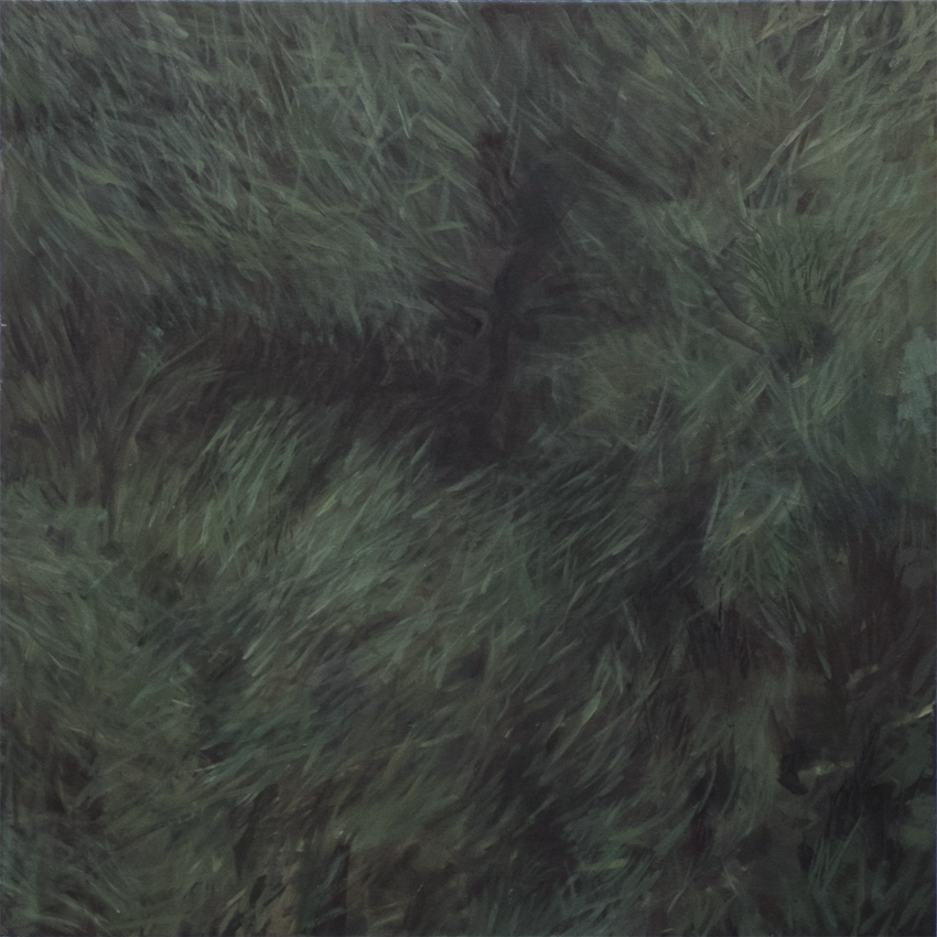 Lawn , 2015, oil on canvas, 36 x 36