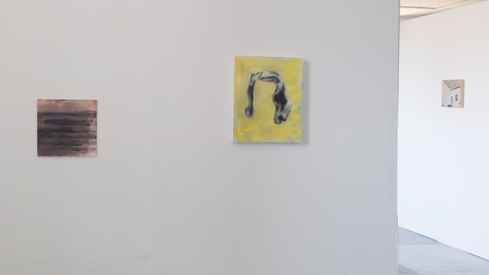 Justine Skahan, Installation view, Ottawa, 2016