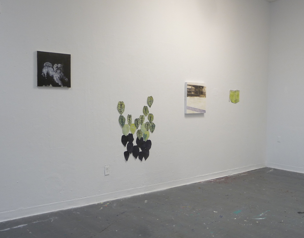 Installation view, University of Ottawa, 2014