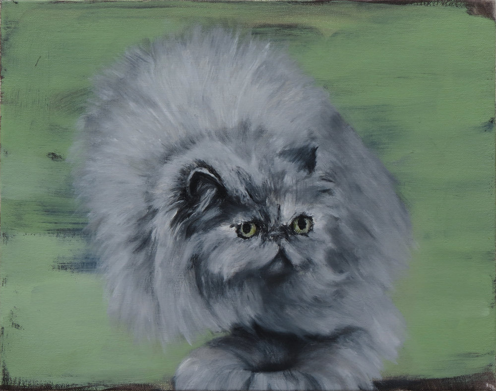 Magic cat , oil on canvas, 9 x 12 inches