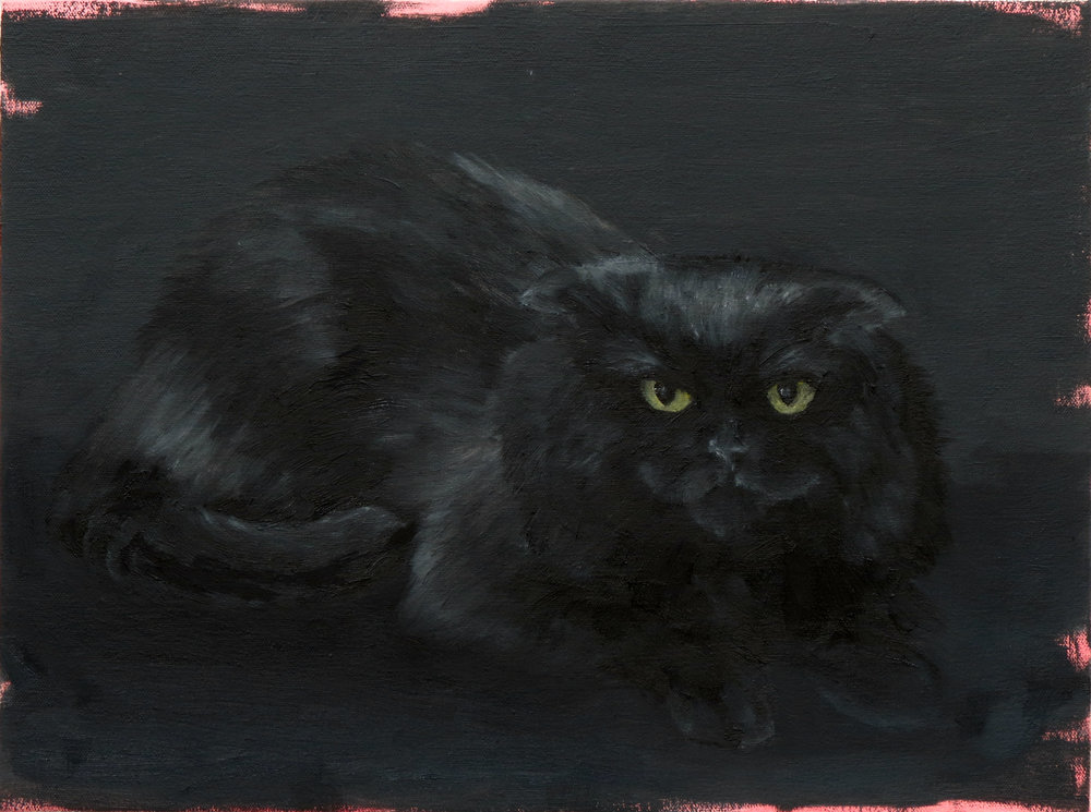 Untitled (black cat) , oil on canvas, 12 x 16 inches