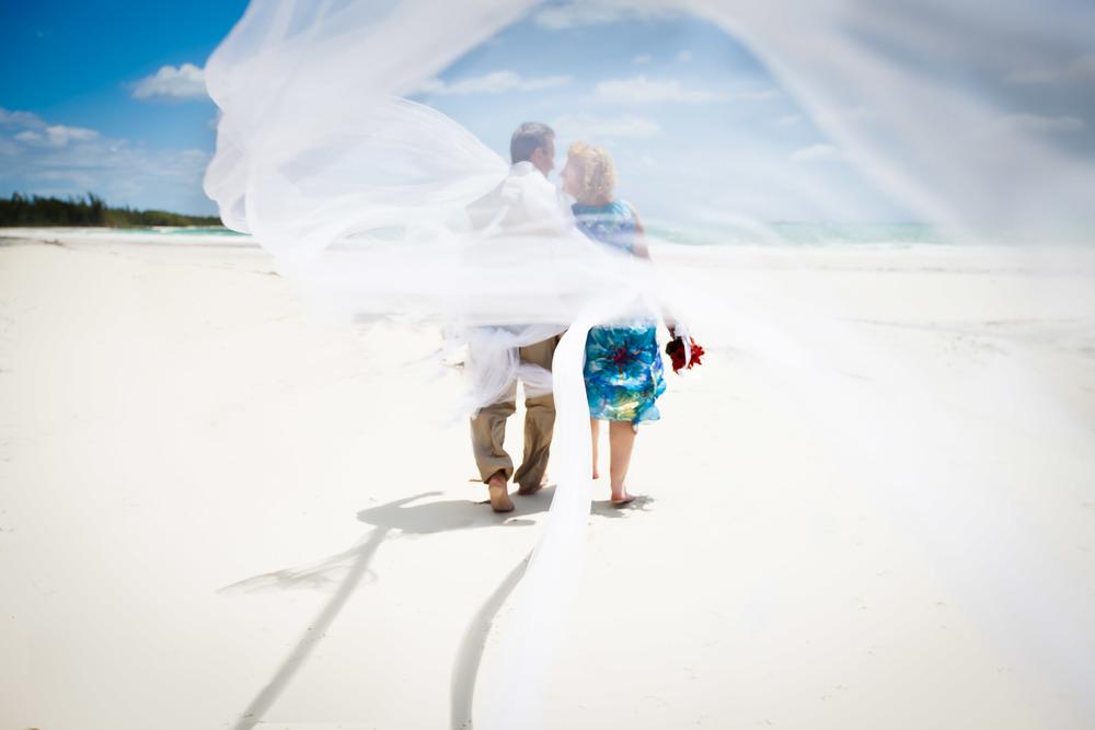 Weddings-2459.jpg