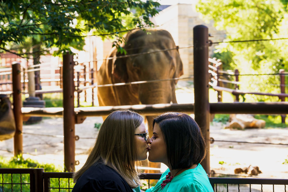 Lacey Stephanie Washington DC National Zoo Engagement Elephants Pandas Seals-019.jpg