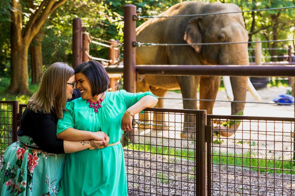 Lacey Stephanie Washington DC National Zoo Engagement Elephants Pandas Seals-040.jpg