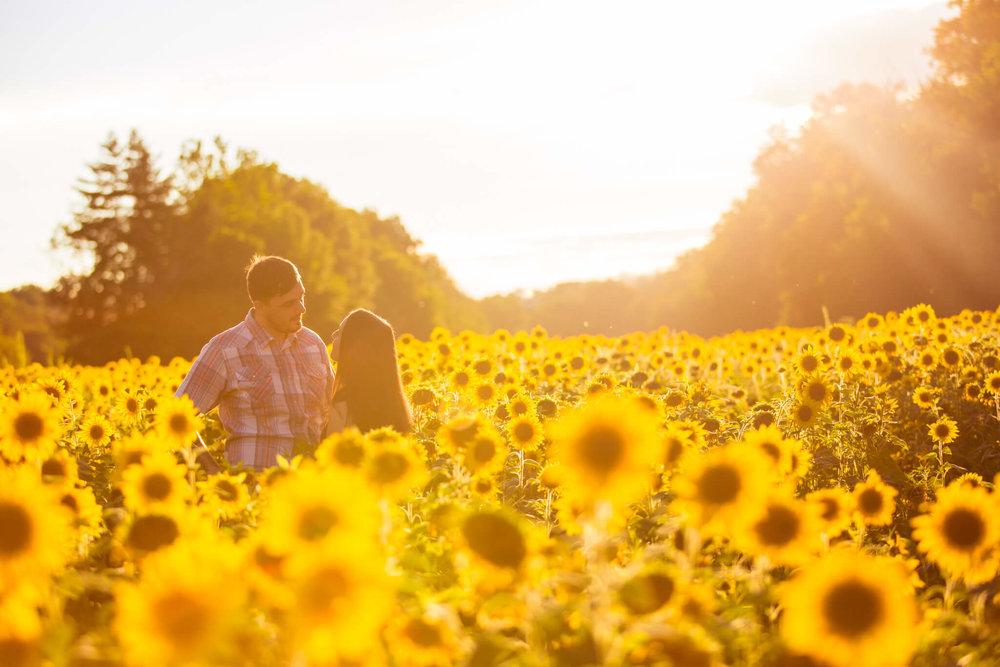Alysia Jerad Sunflower Field Engagement-3.jpg