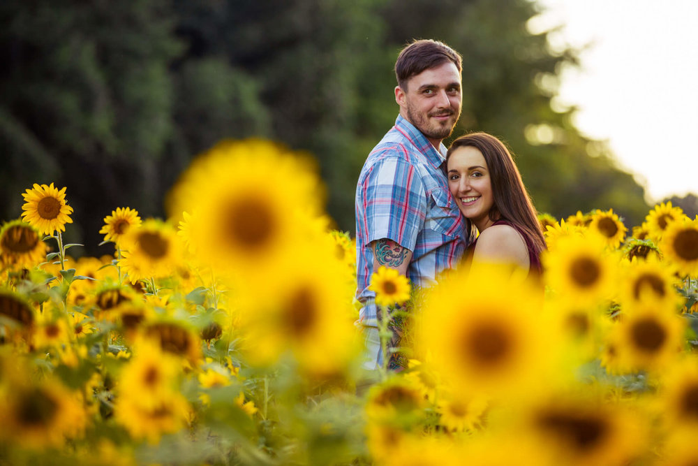 Alysia Jerad Sunflower Field Engagement-4.jpg
